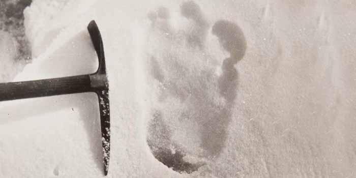 shipton print yeti evidence abominable snowman