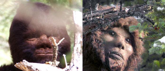 Survivorman Bigfoot Todd Standing Les Stroud Blinky