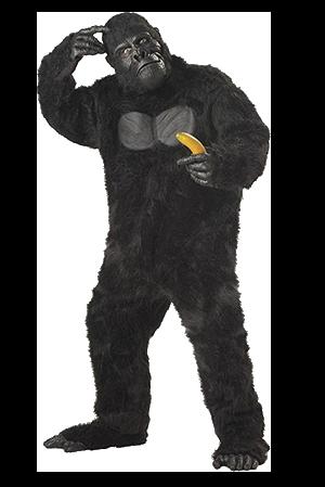 gorillah-bf