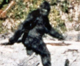 patterson gimlin film 50 years