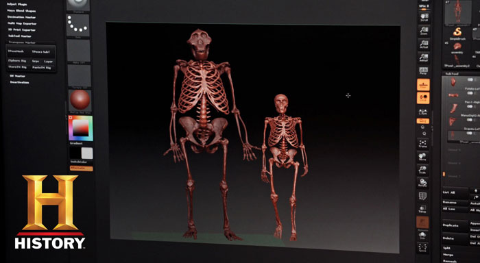 Bigfoot Captured evidence skeleton