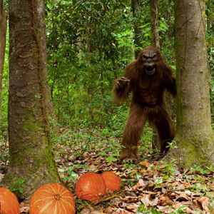 bigfoot costume contest