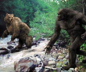 Professional Tracker Watches A Sasquatch Carry Away Dead Black Bear